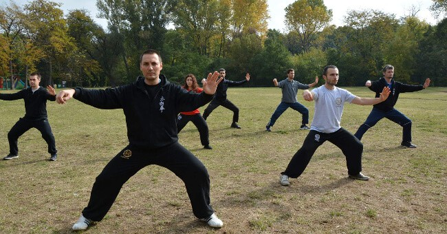 Tai Chi In The Park 2016 600