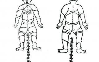 praktika na chan stil taj chi chuan