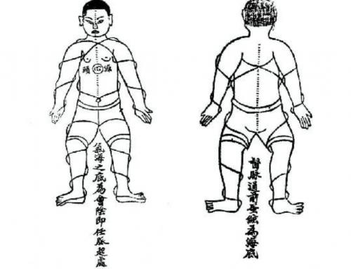 Позиция на тялото