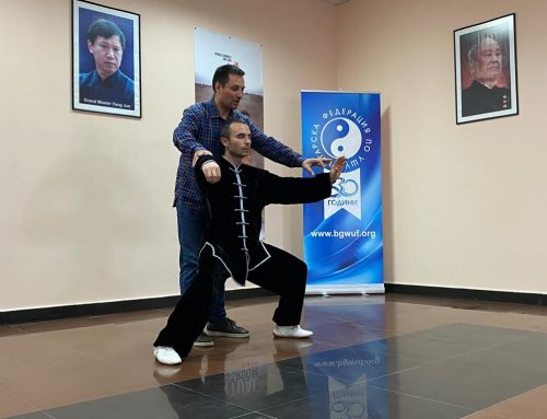 Владимир Андреев с лекция по Чън стил Тай чи чуан